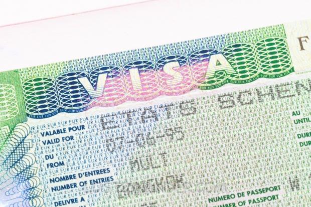 25130291 - schengen visa in passport macro
