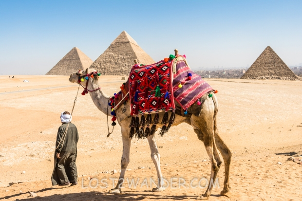 37815821 - pyramids of giza, egypt